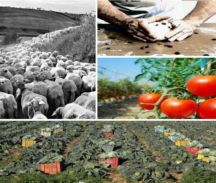 nostri-territori-e-produttori7
